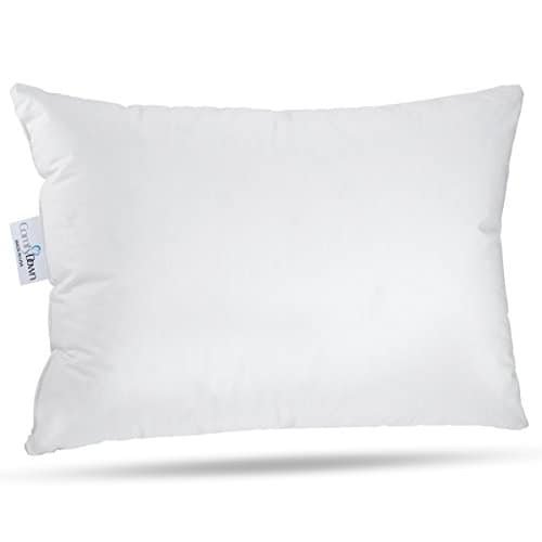 Comfydown Travel Pillow 800 Fill Power European Goose